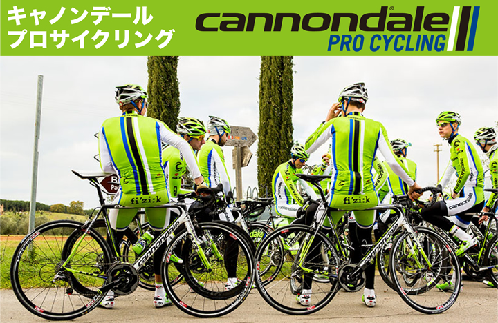 cannondale_ttl.jpg