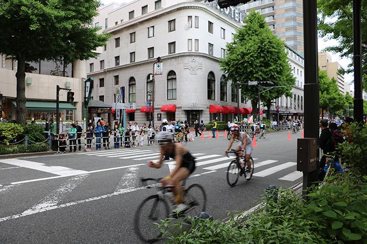 世界トライアスロンシリーズ横浜大会・エイジグループ